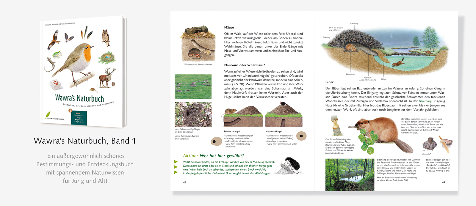 Slider-Naturbuch-Biberbau-1