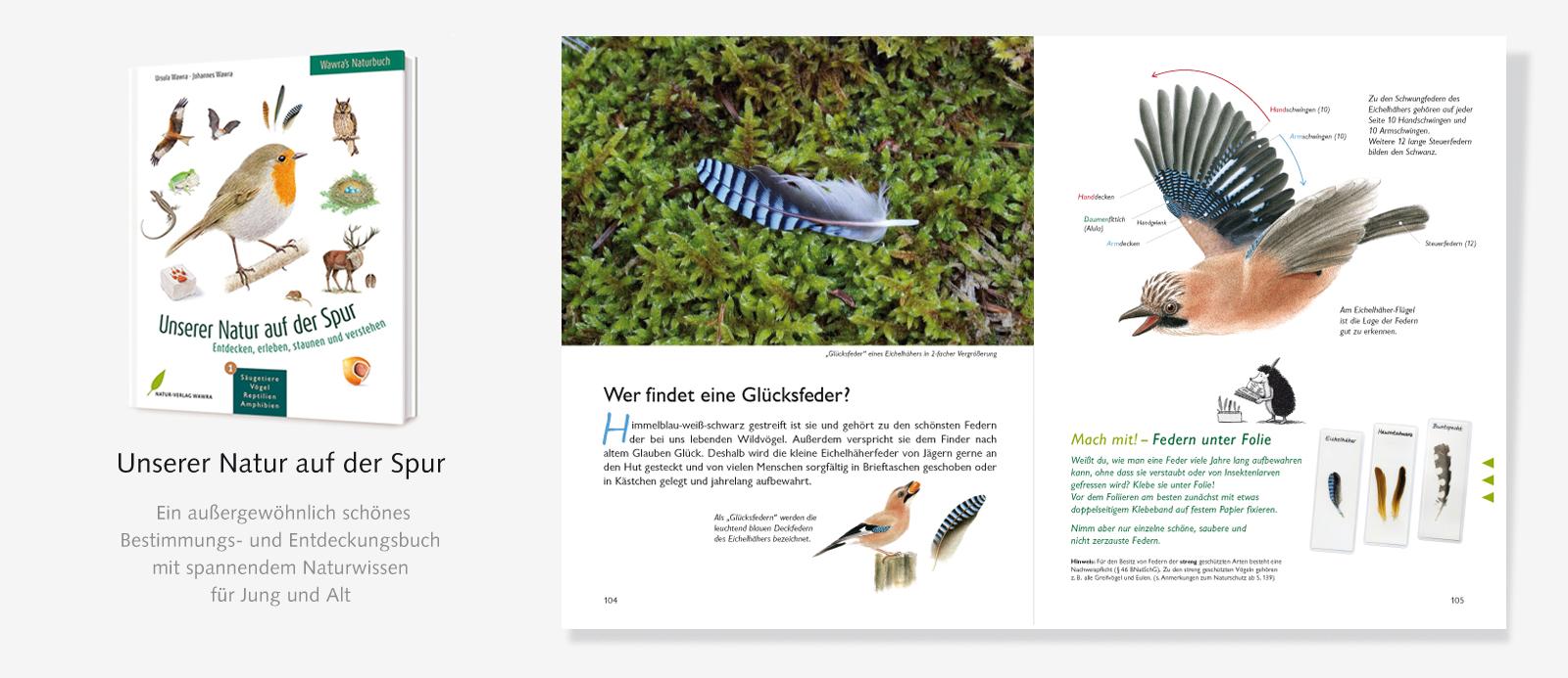 Slider-Naturbuch-Federn-1